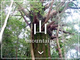 山- Mountain -