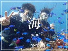 海- Sea -