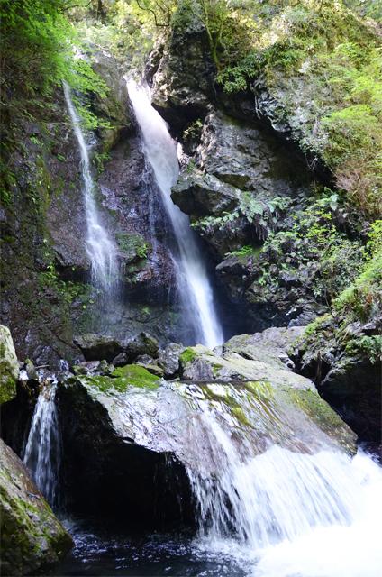 高知滝100選 唐谷の滝